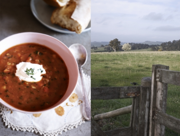 soup and paddock